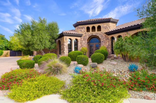1641 S Jay Place, Chandler, AZ 85286 (MLS #5895931) :: Yost Realty Group at RE/MAX Casa Grande