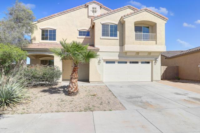 2267 S 173RD Drive, Goodyear, AZ 85338 (MLS #5895940) :: Occasio Realty