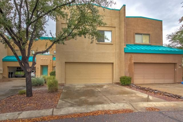 1015 S Val Vista Drive #101, Mesa, AZ 85204 (MLS #5896003) :: Yost Realty Group at RE/MAX Casa Grande