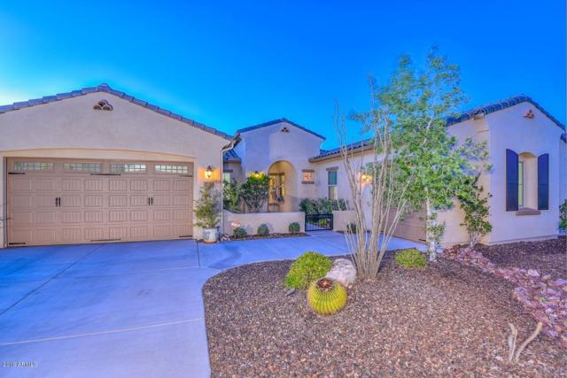 12748 W Calle De Pompas, Peoria, AZ 85383 (MLS #5896026) :: The W Group