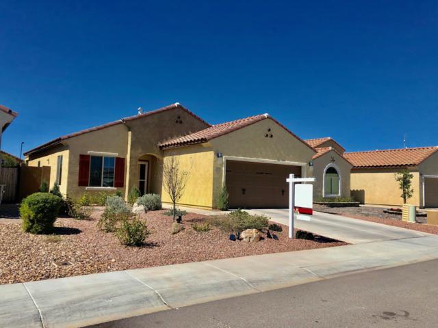 2426 N Petersburg Drive, Florence, AZ 85132 (MLS #5896027) :: CC & Co. Real Estate Team