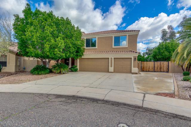 5410 W Saint John Road, Glendale, AZ 85308 (MLS #5896053) :: Yost Realty Group at RE/MAX Casa Grande