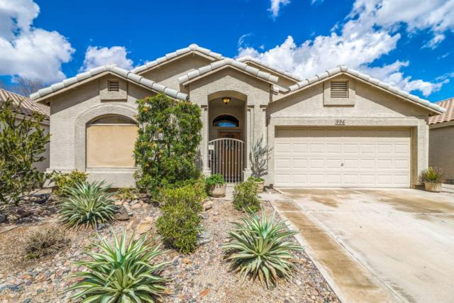 996 E Princeton Avenue, Gilbert, AZ 85234 (MLS #5896088) :: Yost Realty Group at RE/MAX Casa Grande