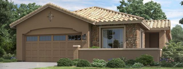 9538 E Talon Avenue, Mesa, AZ 85212 (MLS #5896153) :: CC & Co. Real Estate Team