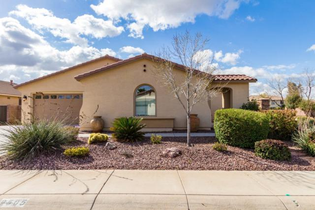 2505 E Donato Drive, Gilbert, AZ 85298 (MLS #5896154) :: RE/MAX Excalibur