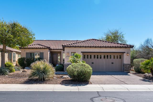 12725 W Maya Way, Peoria, AZ 85383 (MLS #5896167) :: Conway Real Estate