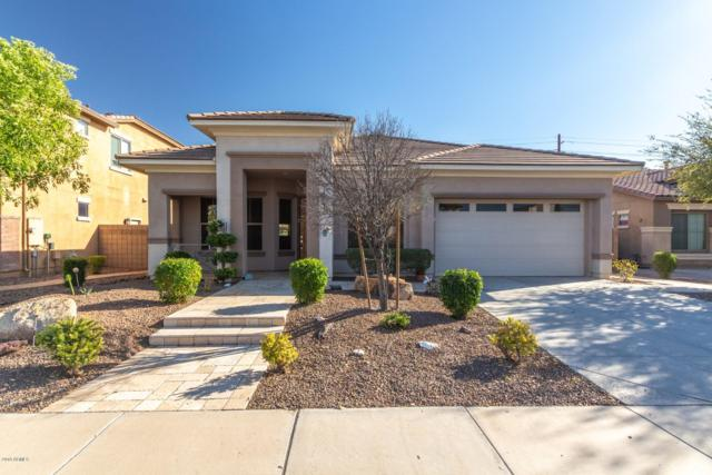 2703 E Blue Spruce Lane, Gilbert, AZ 85298 (MLS #5896179) :: Yost Realty Group at RE/MAX Casa Grande