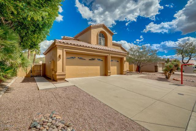 3517 N Reynolds, Mesa, AZ 85215 (MLS #5896239) :: CC & Co. Real Estate Team
