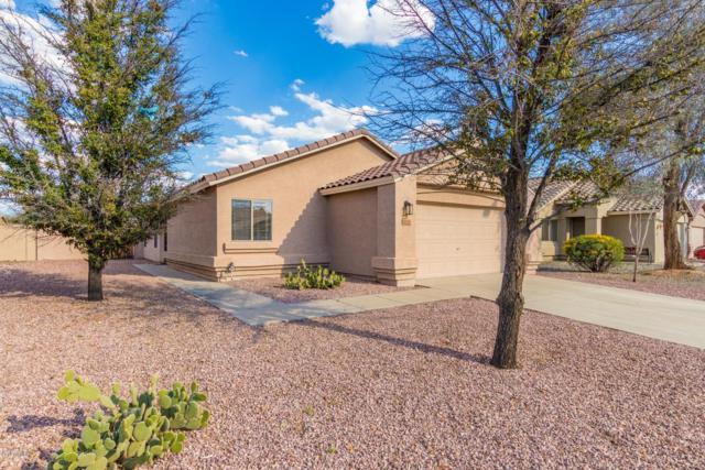 16191 N 138th Avenue, Surprise, AZ 85374 (MLS #5896246) :: REMAX Professionals