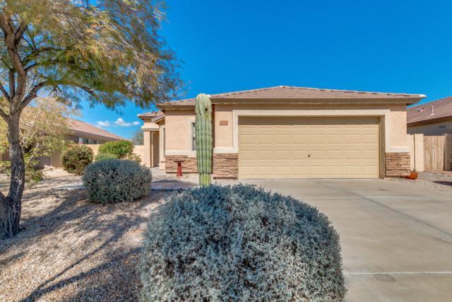 12732 S 175TH Drive, Goodyear, AZ 85338 (MLS #5896279) :: Yost Realty Group at RE/MAX Casa Grande