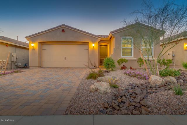 30828 N 137TH Lane, Peoria, AZ 85383 (MLS #5896284) :: RE/MAX Excalibur