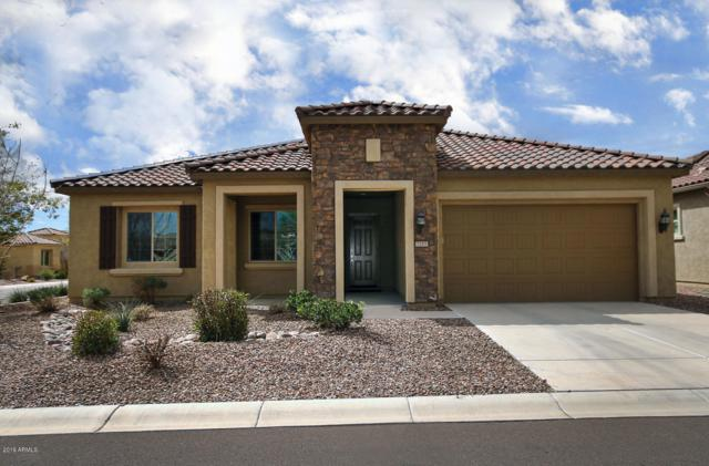 7285 W Sandpiper Way, Florence, AZ 85132 (MLS #5896306) :: The Jesse Herfel Real Estate Group