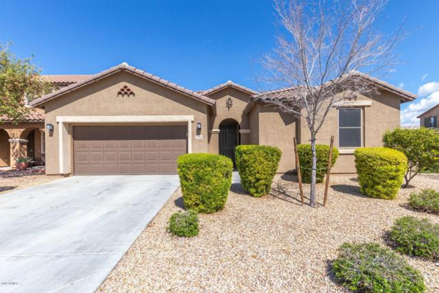 11952 W Overlin Lane, Avondale, AZ 85323 (MLS #5896323) :: The Daniel Montez Real Estate Group