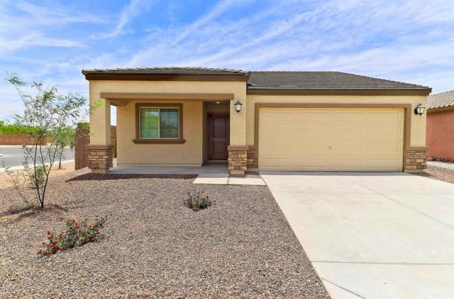 25464 W Clanton Avenue, Buckeye, AZ 85326 (MLS #5896352) :: Keller Williams Realty Phoenix