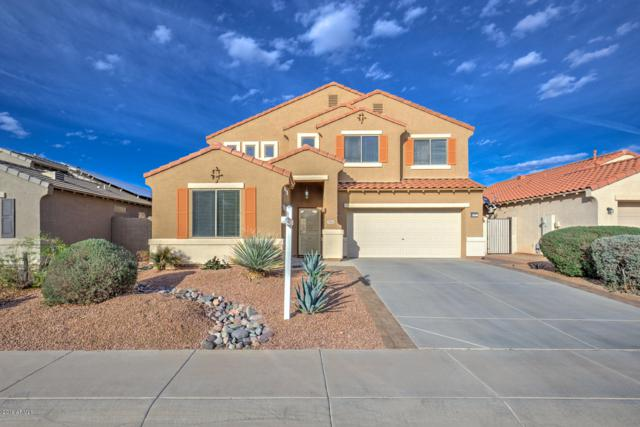 22453 N Vanderveen Way, Maricopa, AZ 85138 (MLS #5896368) :: Kortright Group - West USA Realty