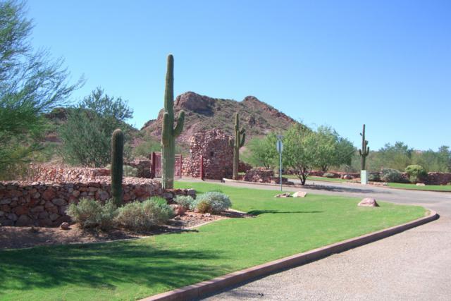 26547 N El Pedregal Circle, Queen Creek, AZ 85142 (MLS #5896408) :: Phoenix Property Group