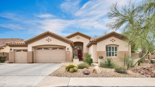 513 E Bridgeport Parkway, Gilbert, AZ 85295 (MLS #5896463) :: Yost Realty Group at RE/MAX Casa Grande