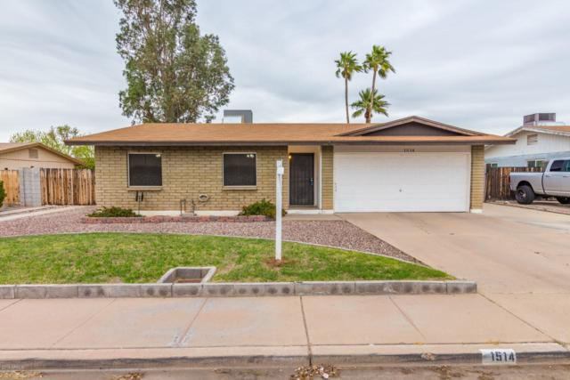 1514 E El Moro Avenue, Mesa, AZ 85204 (MLS #5896538) :: Yost Realty Group at RE/MAX Casa Grande
