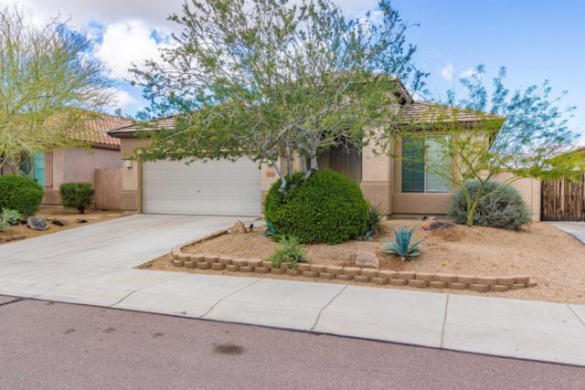 8448 W Maya Drive, Peoria, AZ 85383 (MLS #5896547) :: The Laughton Team