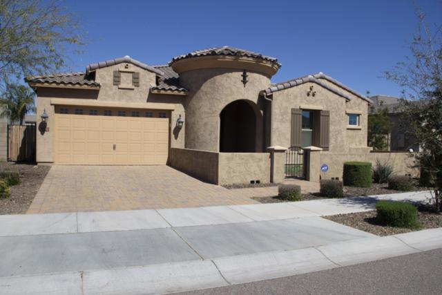 20118 E Quintero Road E, Queen Creek, AZ 85142 (MLS #5896618) :: The Everest Team at My Home Group