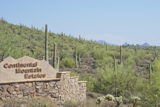 7440 E 75th Place, Cave Creek, AZ 85331 (MLS #5896620) :: The Daniel Montez Real Estate Group