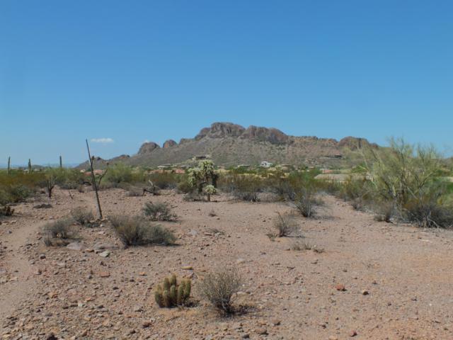 0 E Baseline Avenue, Gold Canyon, AZ 85118 (MLS #5896639) :: Yost Realty Group at RE/MAX Casa Grande