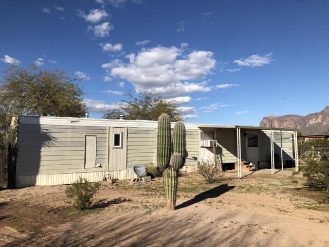 2056 E Scenic Street, Apache Junction, AZ 85119 (MLS #5896675) :: The Kenny Klaus Team