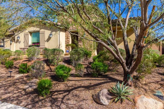 24509 N 72ND Way, Scottsdale, AZ 85255 (MLS #5896693) :: CC & Co. Real Estate Team