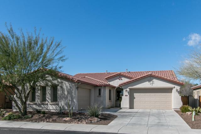 30550 N 125TH Drive, Peoria, AZ 85383 (MLS #5896708) :: Kortright Group - West USA Realty