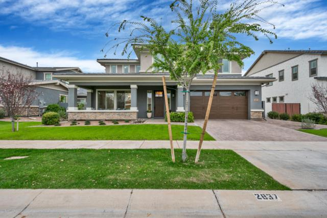 2837 E Austin Drive, Gilbert, AZ 85296 (MLS #5896729) :: The Kenny Klaus Team