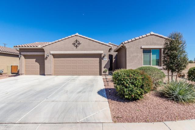 20167 N Winter Escape Court, Maricopa, AZ 85138 (MLS #5896736) :: Occasio Realty