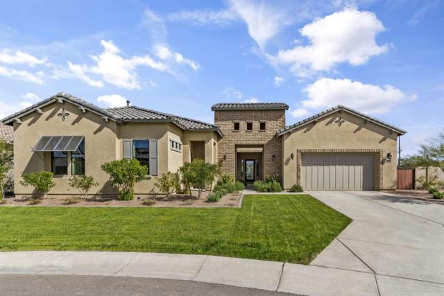 7153 S Penrose Drive, Gilbert, AZ 85298 (MLS #5896744) :: The Kenny Klaus Team
