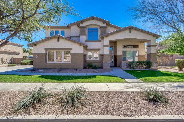 18701 E Pine Barrens Avenue, Queen Creek, AZ 85142 (MLS #5896798) :: CC & Co. Real Estate Team