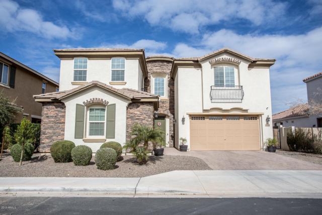 4322 E Grand Canyon Drive, Chandler, AZ 85249 (MLS #5896808) :: RE/MAX Excalibur