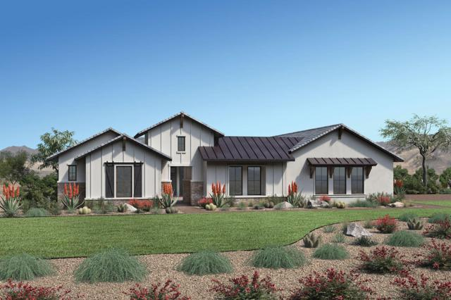 17740 E Appaloosa Drive, Queen Creek, AZ 85142 (MLS #5896867) :: Revelation Real Estate