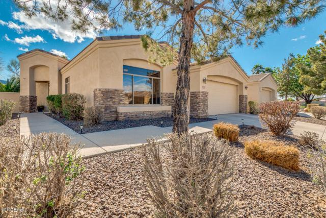 2019 E Valencia Drive, Phoenix, AZ 85042 (MLS #5896869) :: The Everest Team at My Home Group