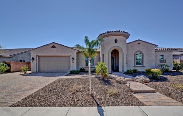 9401 W Via Montoya Drive, Peoria, AZ 85383 (MLS #5896872) :: Yost Realty Group at RE/MAX Casa Grande