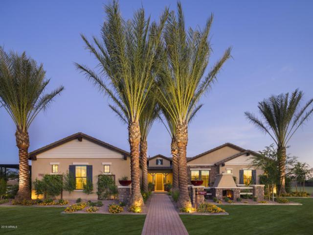 17673 E Bronco Drive #20, Queen Creek, AZ 85142 (MLS #5896883) :: Revelation Real Estate