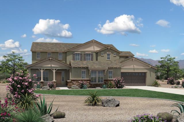 17993 E Colt Court, Queen Creek, AZ 85142 (MLS #5896912) :: Revelation Real Estate