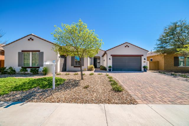 16085 W Vernon Avenue, Goodyear, AZ 85395 (MLS #5896937) :: RE/MAX Excalibur
