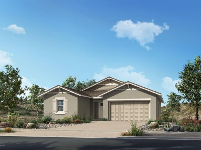 18121 W Cactus Flower Drive, Goodyear, AZ 85338 (MLS #5896986) :: The Laughton Team