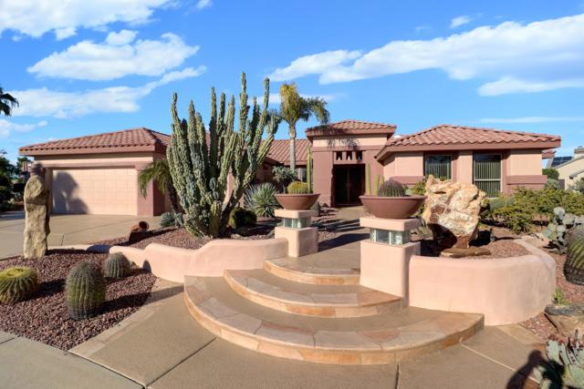 19729 N Orangetree Court, Surprise, AZ 85374 (MLS #5897016) :: Yost Realty Group at RE/MAX Casa Grande