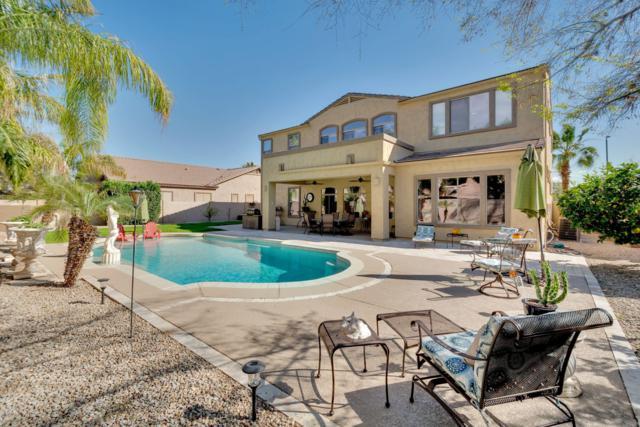 328 W Kingbird Drive, Chandler, AZ 85286 (MLS #5897027) :: Kepple Real Estate Group
