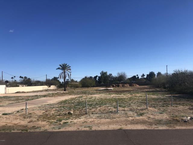 6535 E Paradise Drive, Scottsdale, AZ 85254 (MLS #5897028) :: Yost Realty Group at RE/MAX Casa Grande