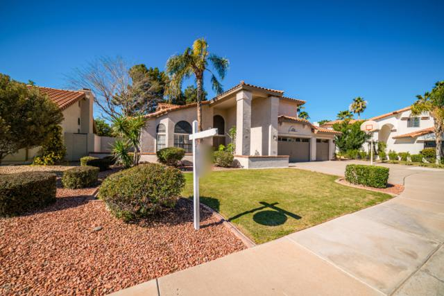 10935 W Ashbrook Place, Avondale, AZ 85392 (MLS #5897037) :: Yost Realty Group at RE/MAX Casa Grande