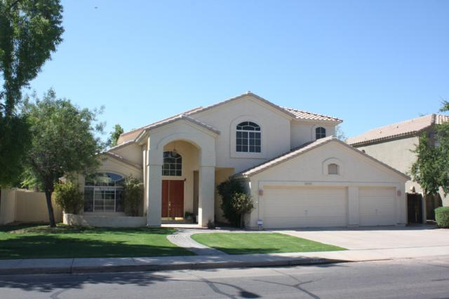 5771 W Gail Drive, Chandler, AZ 85226 (MLS #5897067) :: The Kenny Klaus Team