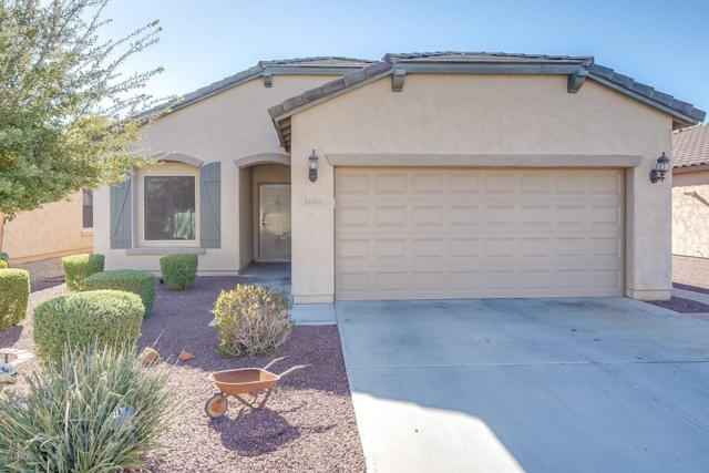 11025 E Sutter Avenue, Mesa, AZ 85212 (MLS #5897082) :: Team Wilson Real Estate