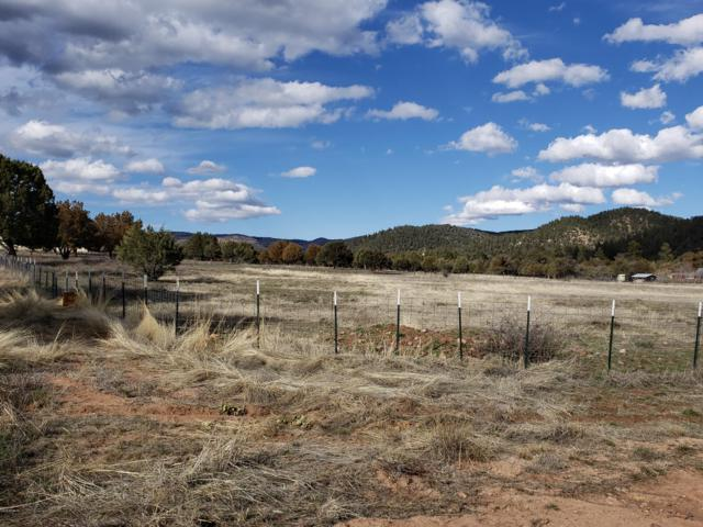 200 E Naegelin Crossing, Young, AZ 85554 (MLS #5897119) :: The Jesse Herfel Real Estate Group