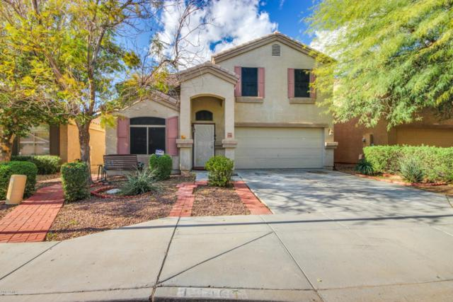 11146 W Brittlewood Drive, Phoenix, AZ 85037 (MLS #5897148) :: Yost Realty Group at RE/MAX Casa Grande