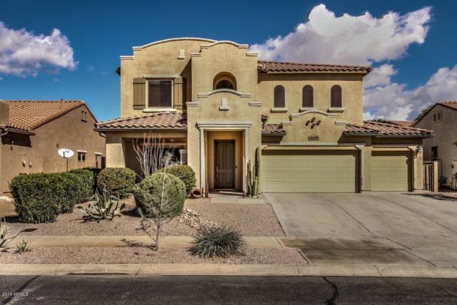 16170 W Christy Drive, Surprise, AZ 85379 (MLS #5897209) :: CC & Co. Real Estate Team